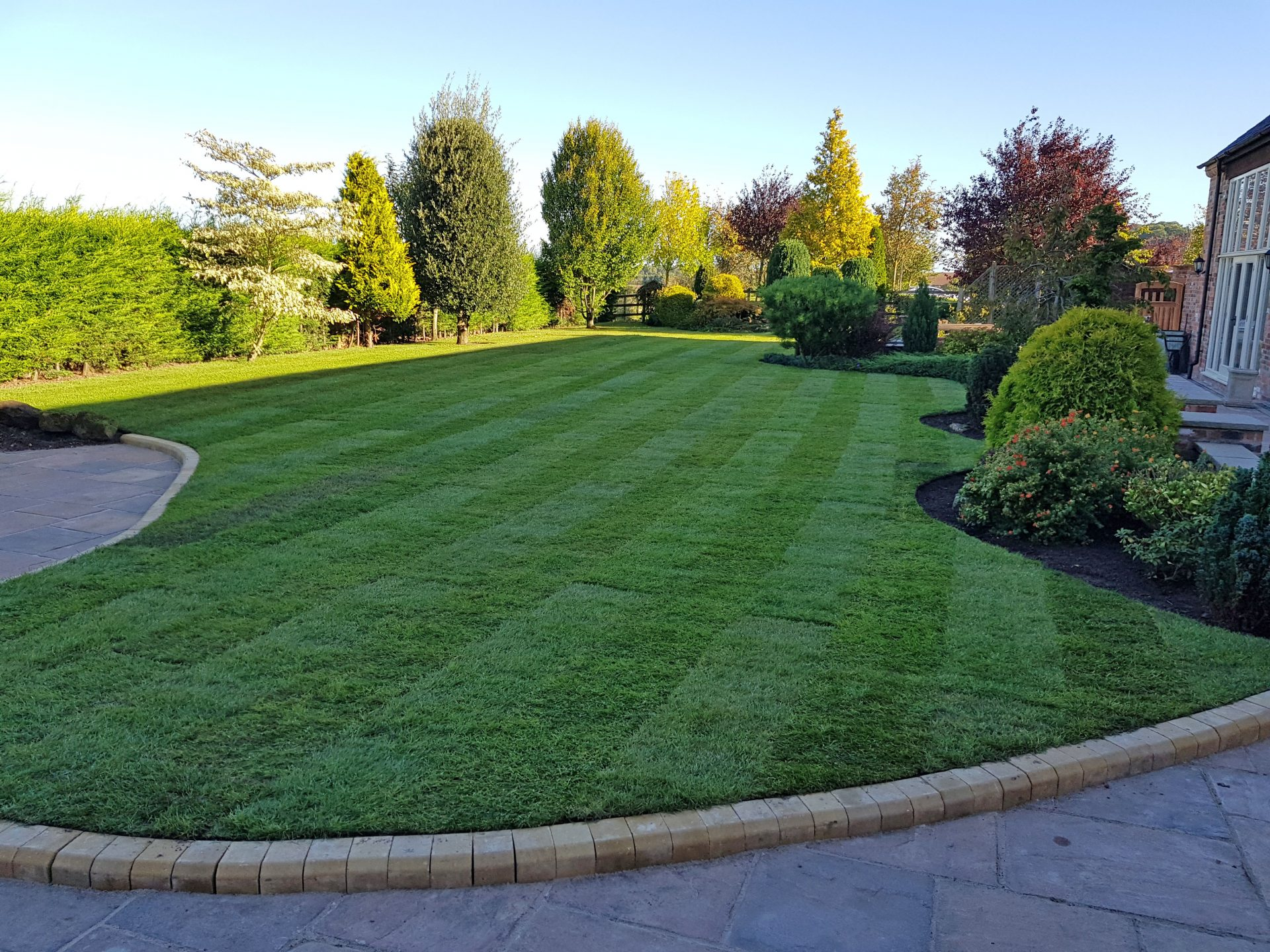 Large curved green lawn freshly turfed